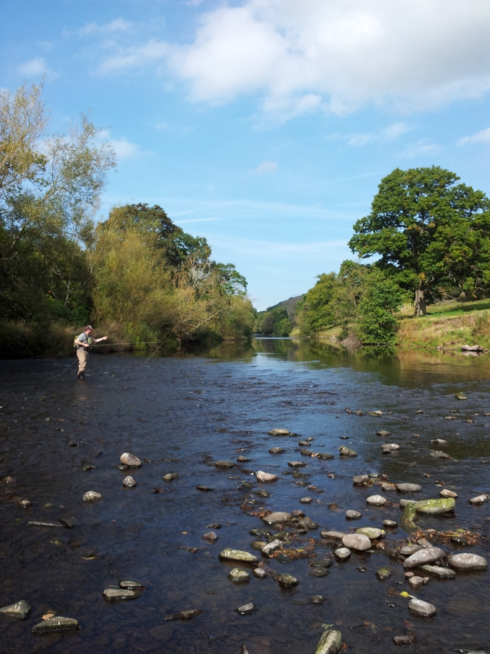 River Usk Trout Fishing